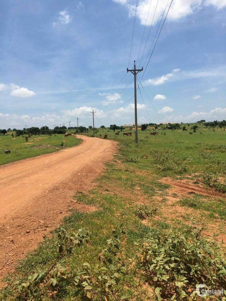 Lô đất chính chủ ngay 2 tuyến đường quy hoạch, đầu tư siêu lợi giá chỉ 90k/m2