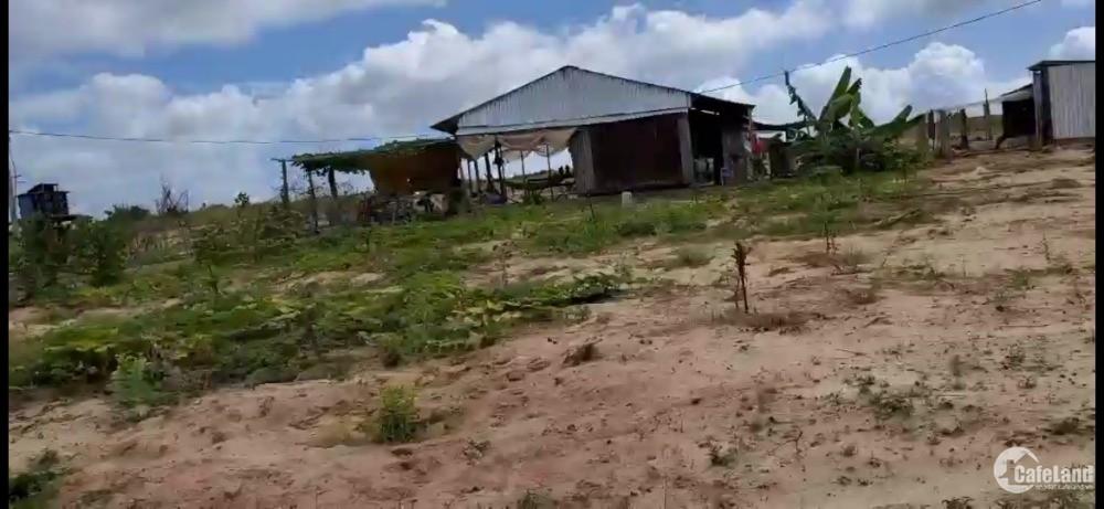 Bán đất vườn bình tân gần liên huyện, liên xã đang làm, cv safari Lh 0385230667