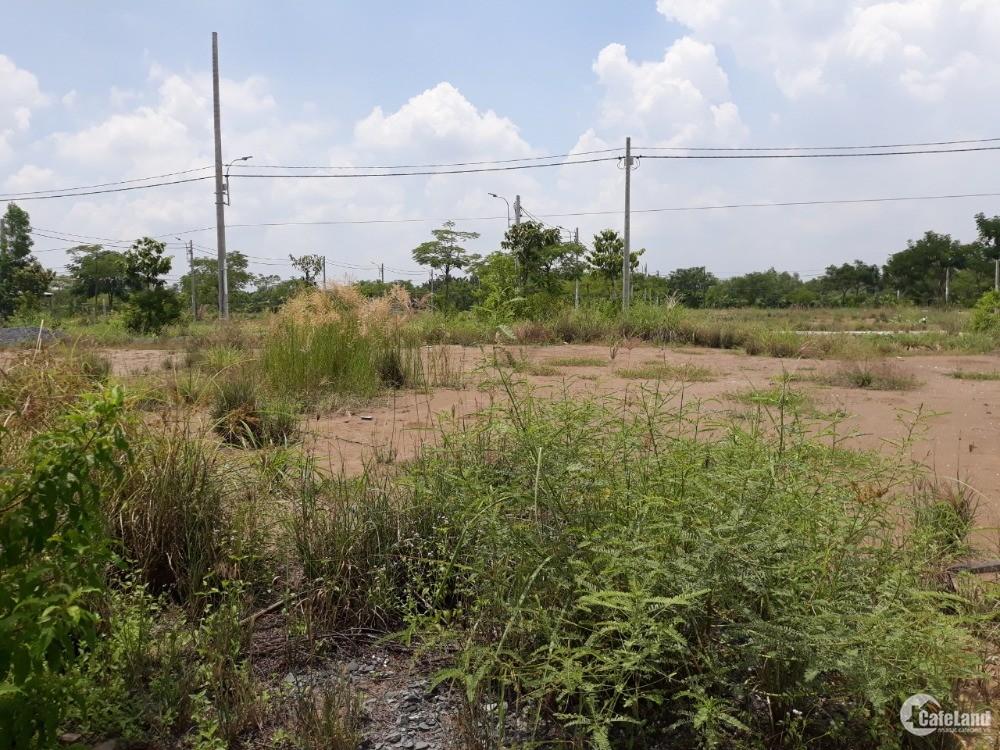 chính chủ ký gửi đất bán huyện cần giờ