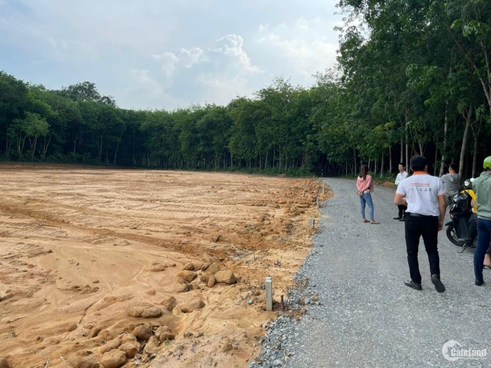Bán Đất Vĩnh Tân đường trường lái xe dt 350m2 gía chỉ dưới 950tr