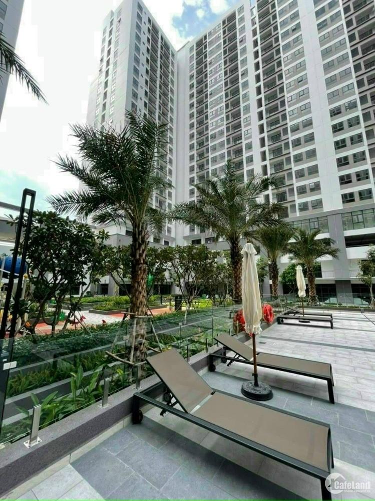 Bán Shophouse Q7 Boulevard - Đã nhận nhà, đường Nguyễn Lương Bằng, giá 12 tỷ