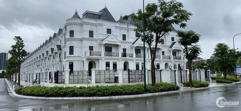 Phân khu biệt thự lâu đài phong cách cổ điển duy nhất tại Ciputra.