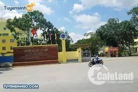Mặt Tiền Nguyễn Thiện Thành Trà Vinh, Khinh doanh đa ngành nghề.
