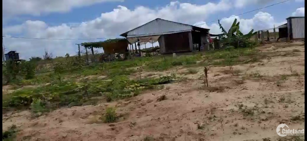 Bán 7554m2 đất vườn bình tân cạnh liên huyện - xã và cv safari Lh 0385230667