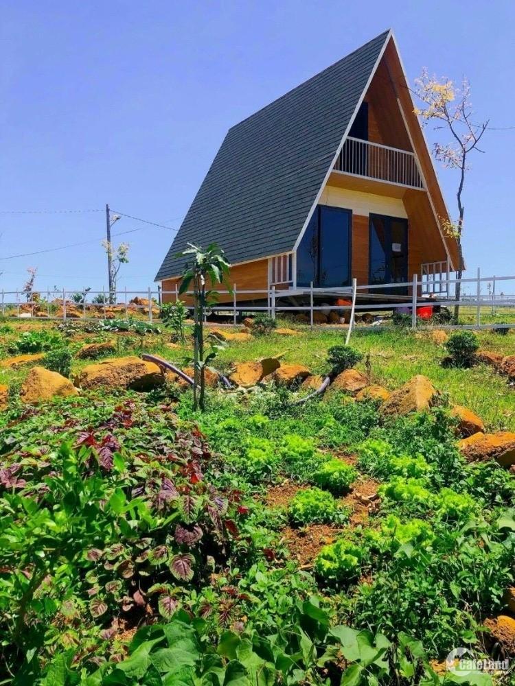 Chính chủ bán nền đất nghỉ dưỡng view đồi, có sẵn 72m2 thổ cư giá rẻ