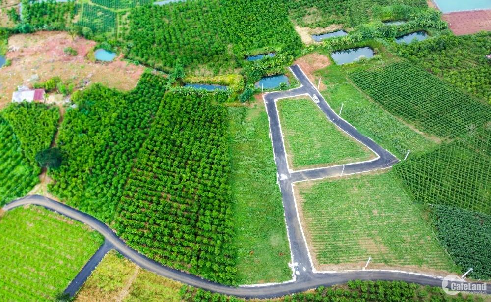 Đất nền Bảo Lộc,SHR từng nền, giá chỉ từ 4,8tr/m2 cơ hội đầu tư sinh lời lớn
