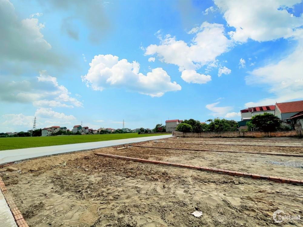 Đất sổ đỏ 85m2 tại huyện Cẩm Giàng- Hải Dương