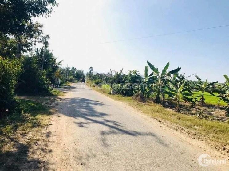 Cần bán lô đất 1573m2 có sẳn 300m ONT ở Diên Đồng - Diên Khánh đường nhựa 10m