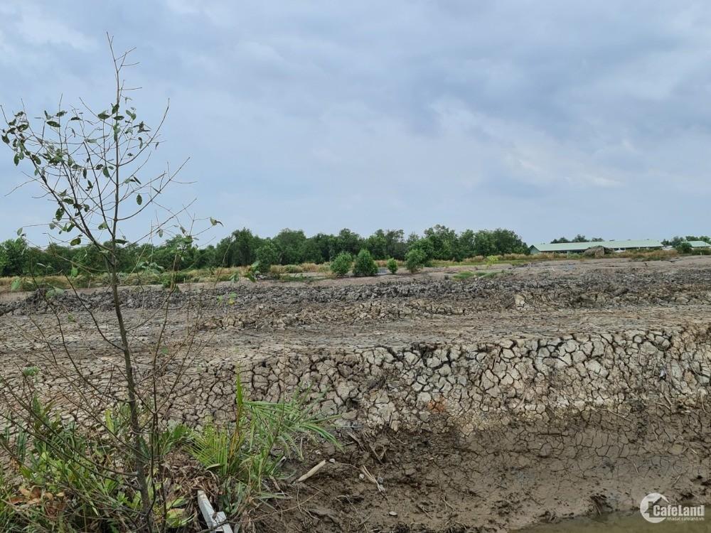 Bán đất xã lý nhơn, đường lý nhơn huyện cần giờ, TP: DT:1147m², giá 1 tỷ 650 tri