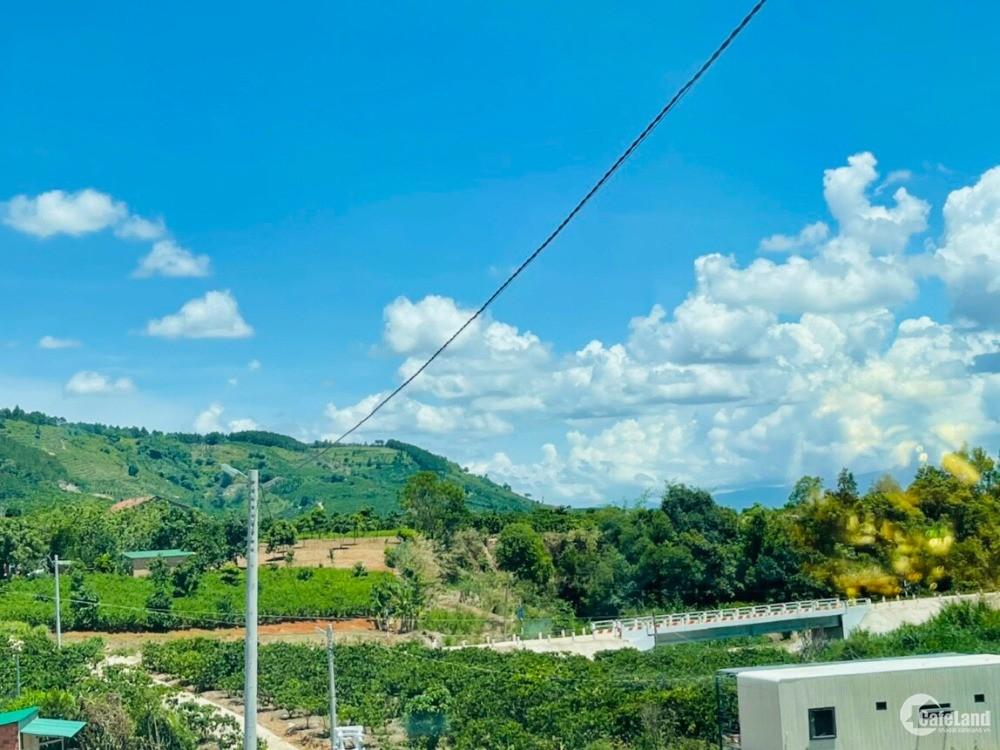 Chính chủ cần sang tên ngay 510m2 đất ở có suối đường DT 725 xã Gia Lâm Lâm Hà