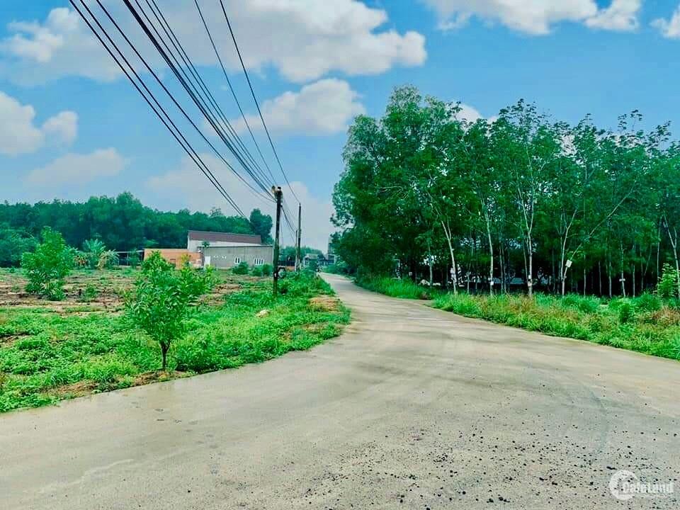 Bán lô đất 120m2 cách trung tâm hành chính Phú Mỹ 2km, sổ hồng công chứng ngay
