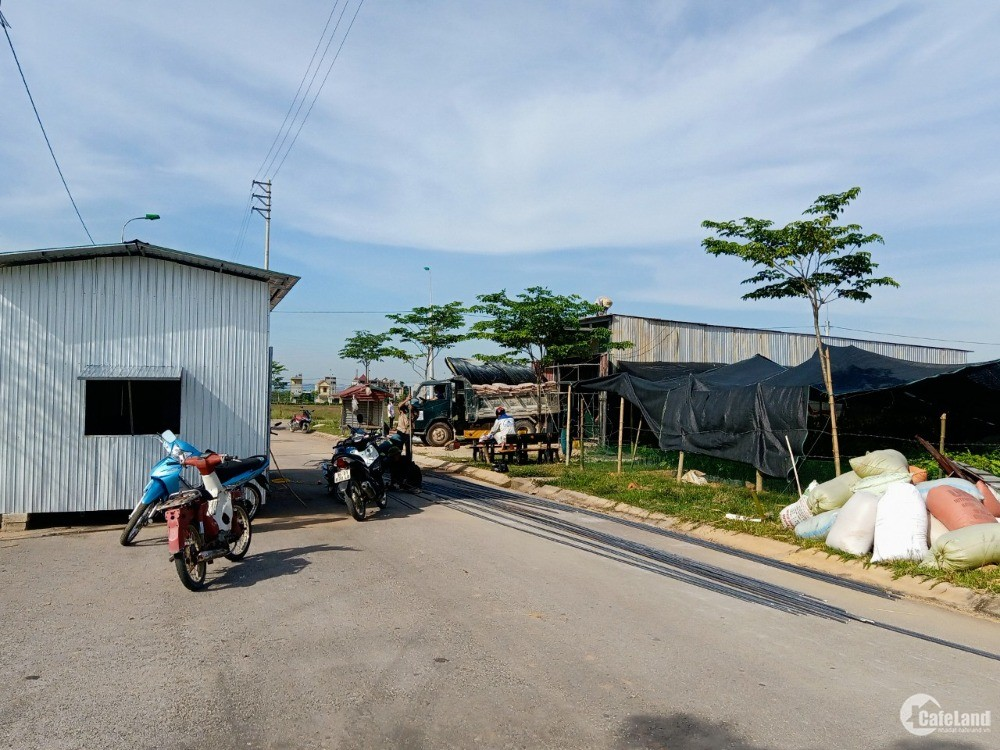 Bán đất nền dự án Sao Mai - Thanh Hóa 115m2, đã có sổ.