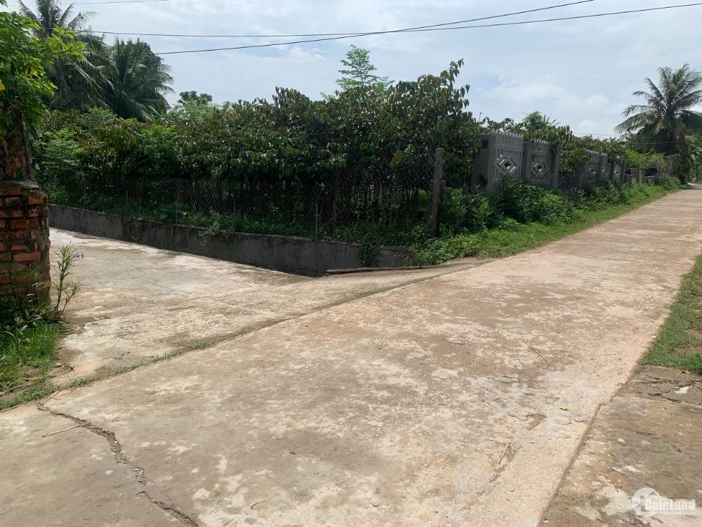 Cần tiền bán gấp 518m2 đất ở ngay gần bệnh viện đa khoa quốc tế Sao Mai.