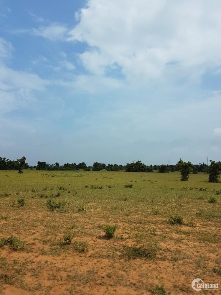 Bán 4144m2 đất vườn bình tân 538tr gần công viên safari, dân cư Lh 0385 230 667