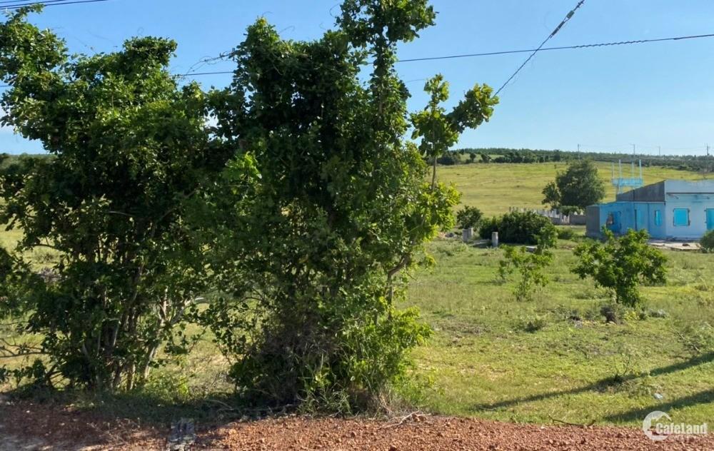 Bán 5871m2 đất bình tân gần liên huyện, safari 645tr tặng 3 chỉ Lh 0938677909