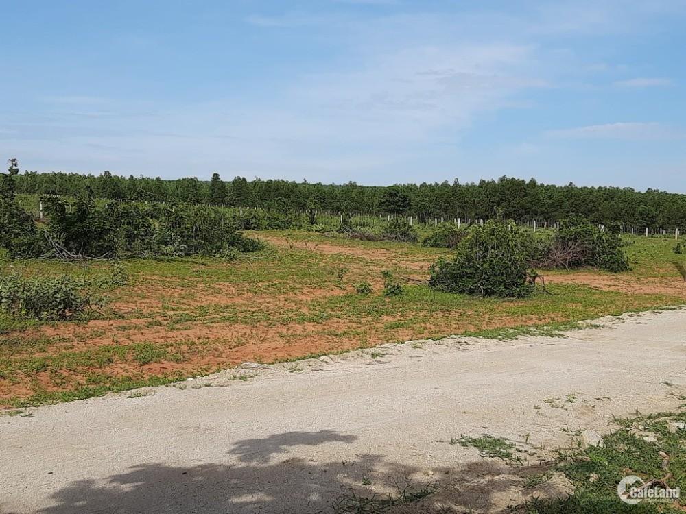 2 lô đất hồng thái gần đường liên huyện và dân cư từ 900tr/ha Lh 0385230667 Hiền