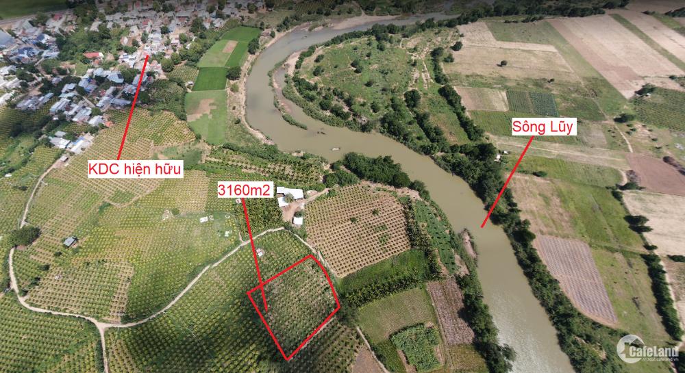 Còn 2 lô siêu phẩm view sông Sông Lũy, cách QL1A 500m, sát KDC, có đường, sẵn sổ