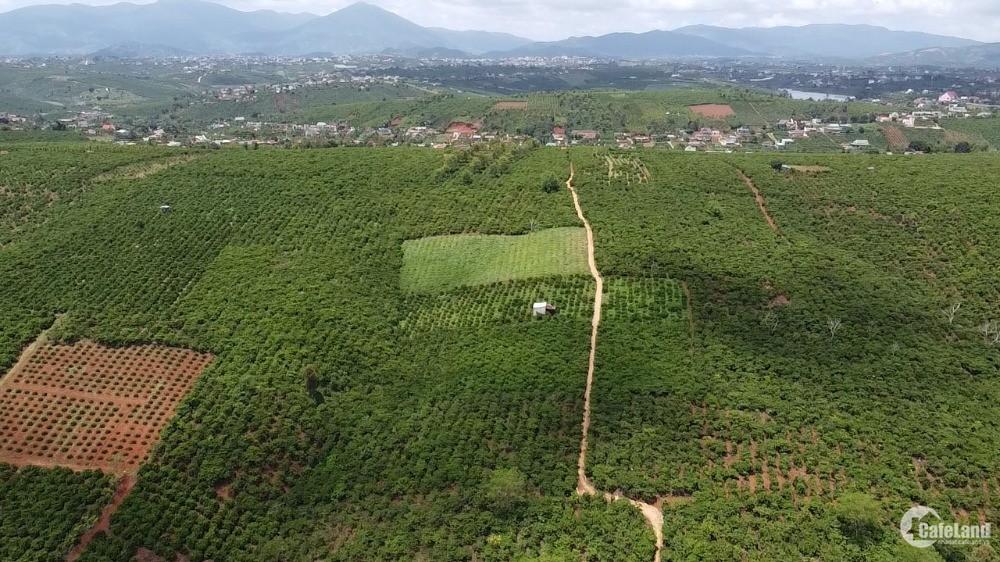 Đất Tân Châu mt bê tông 370tr/sào đường ô tô sổ hồng riêng