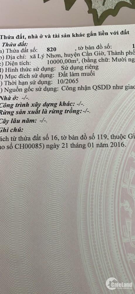 Cần bán gấp lô đất mặt tiền đường xe hơi, đường đê muối Tiền Giang, Lý Nhơn, Cần