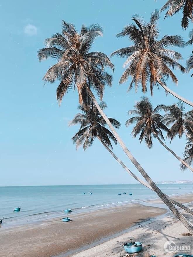 Chính chủ cần bán 2 lô đất mặt biển Bình Thuận giá chỉ 16.5tr/m2