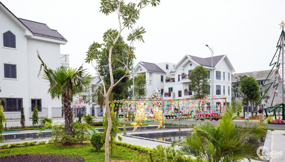 Bán lô ngoại giao biệt thự góc view hồ tại Times Garden Vĩnh Yên .