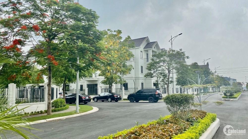 Chính thức mở bán dự án Times Garden Vinh Yên giá chỉ từ 30 triệu/m2