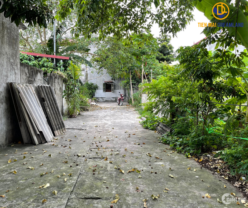 Tiến Mai cần bán gấp lô đất 77m2 tại Xuân Khanh Sơn Tây Hà Nội LH: 0988601919