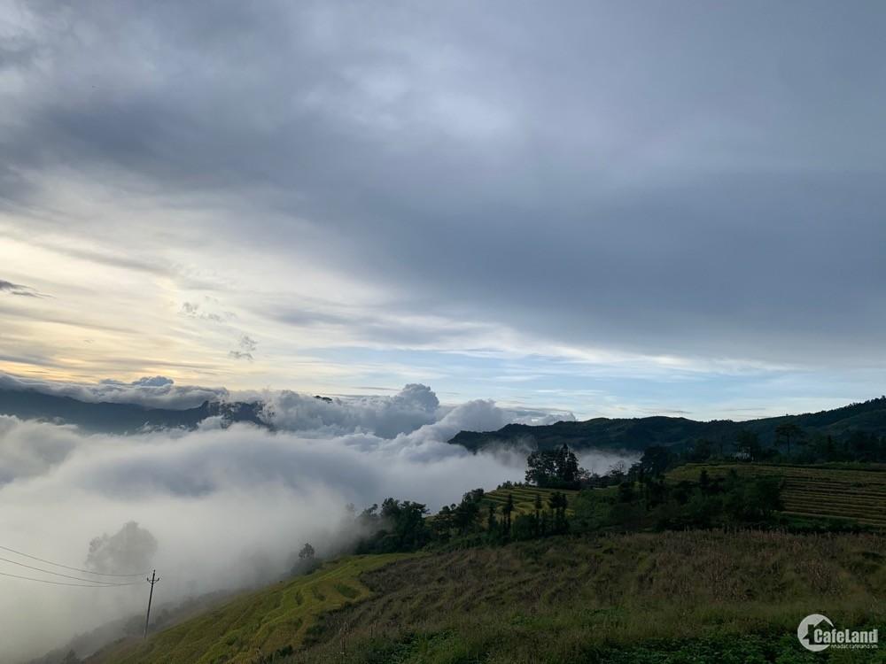 CƠ HỘI VÀNG DUY NHẤT HÔM NAY : BÁN LÔ ĐẤT ĐẸP NHẤT Y TÝ Lao Chải,Lào Cai 4000m2