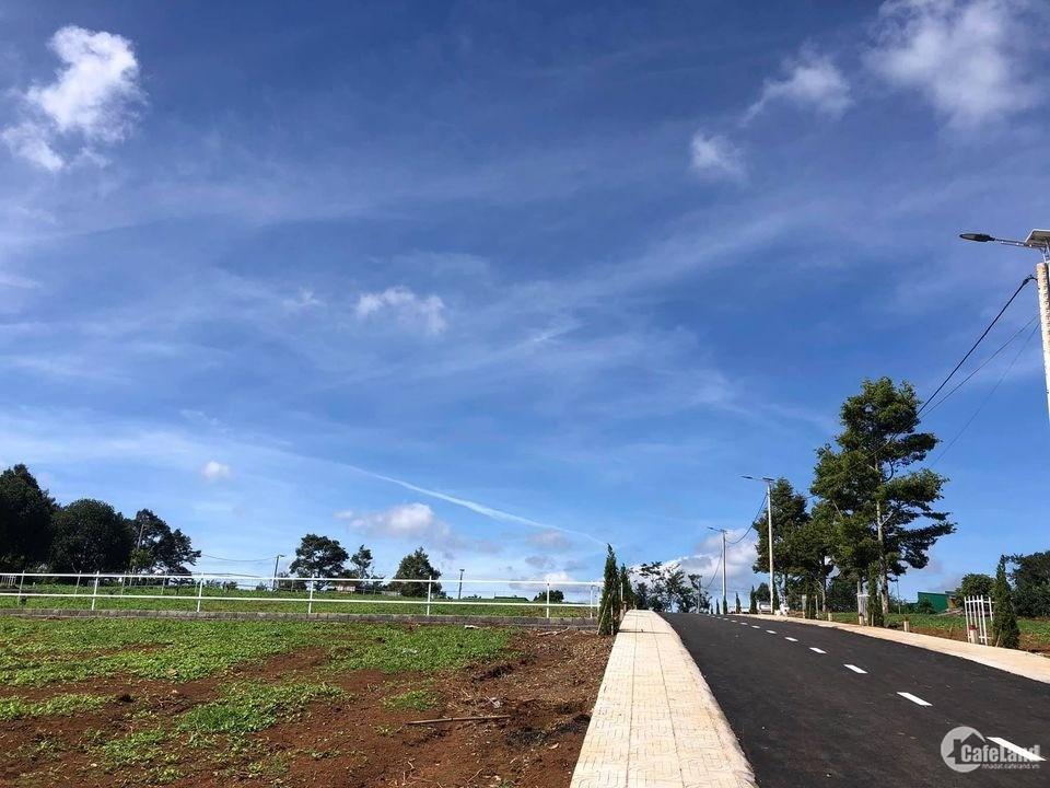 Bán gấp Lô đất thổ cư tại TP Bảo Lộc giá F0 Chỉ 550tr