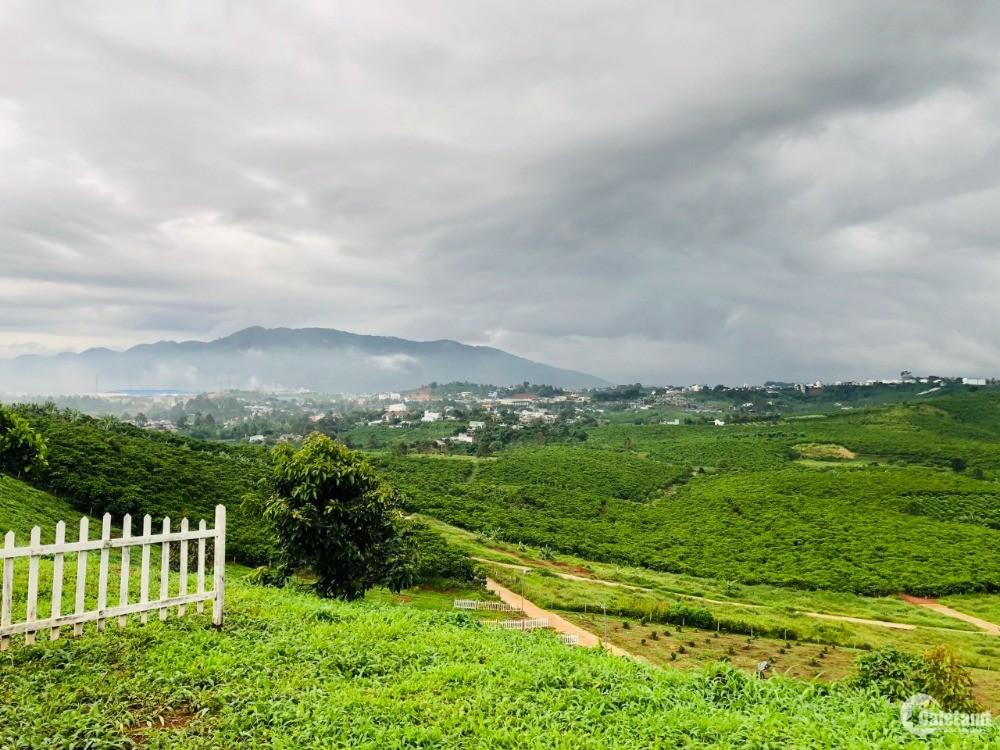 Đất trung tâm Bảo Lộc, view thung lũng, núi Đại Bình, giá rẻ