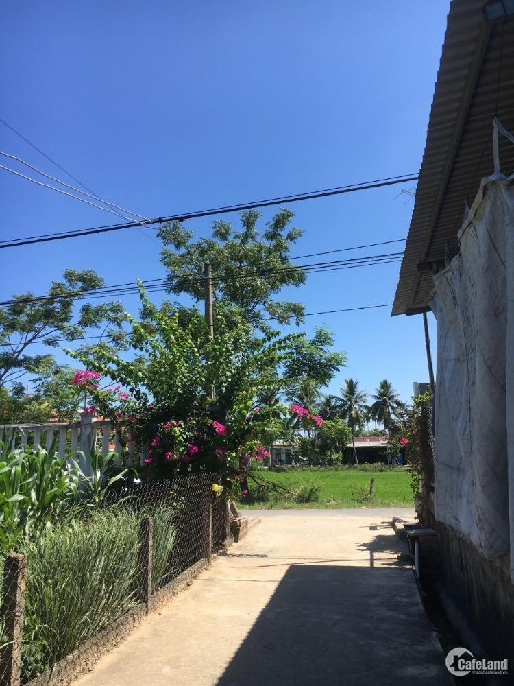 Lô Điện Tiến gần đồng lúa, giá bán nhanh mùa dịch, đường oto, đã có sổ