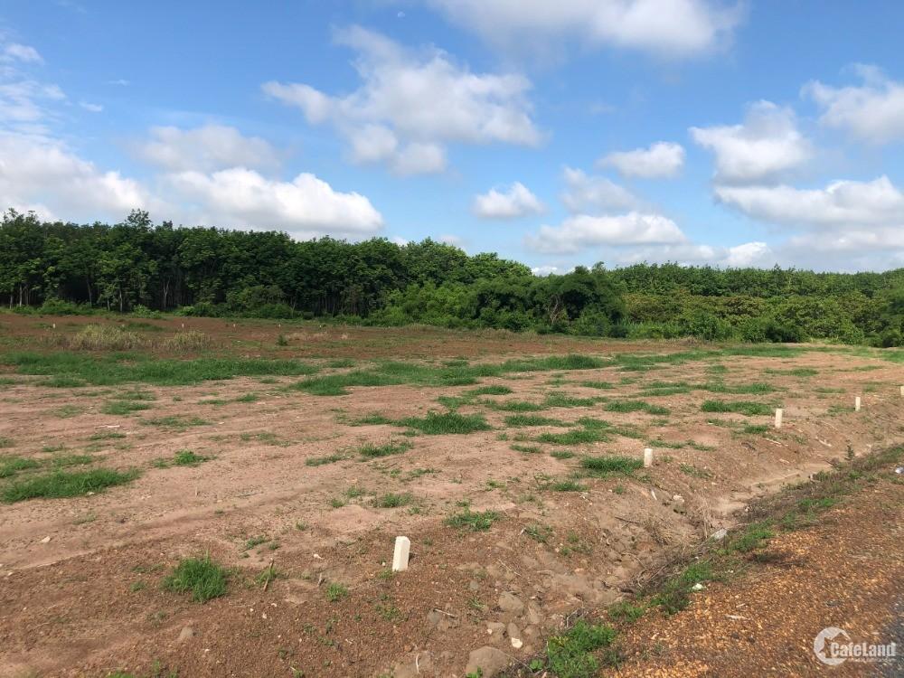 Đất giáp chợ hưng thủy 310m/thổ cư - sổ sẵn   gần thị trấn lộc ninh