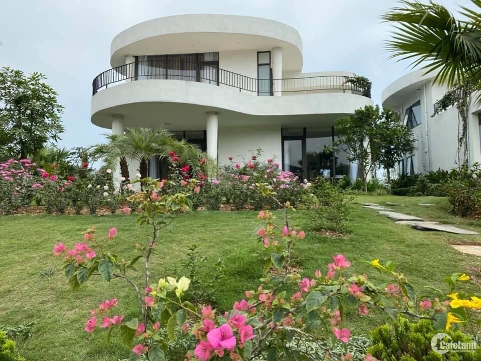 suất ngoại giao dự án ivory villas resort 1000m2 giá 8,5 tỷ