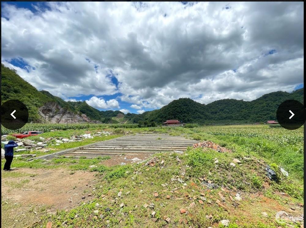 Covid hoành hoành cần bán lô đất 5065m2 ngay trung tâm nông trường Mộc Châu