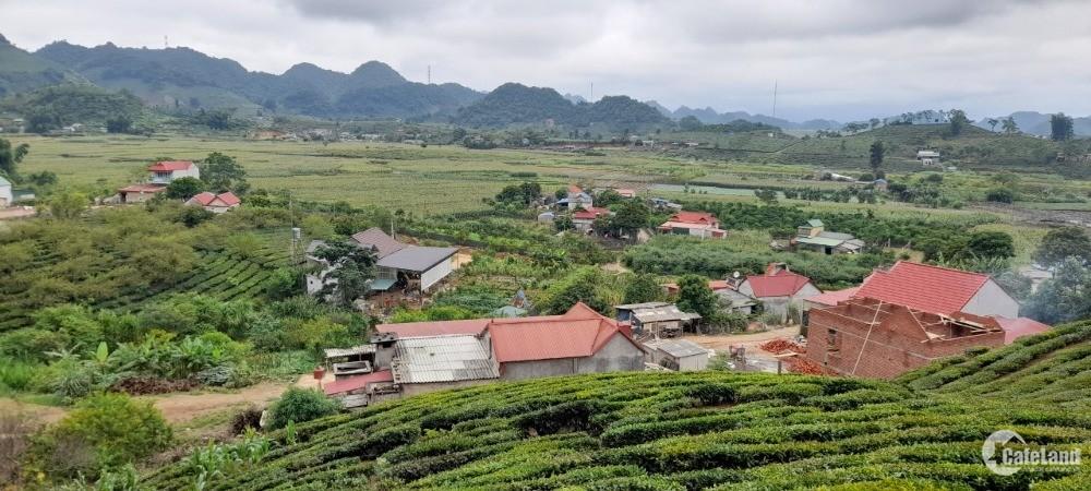 Lô đất đẹp tại Mộc Châu cho các nhà đầu tư.
