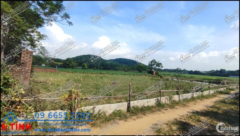 Đất nền giá rẻ Thạch Thất - Tiến Xuân cạnh đại học Quốc Gia