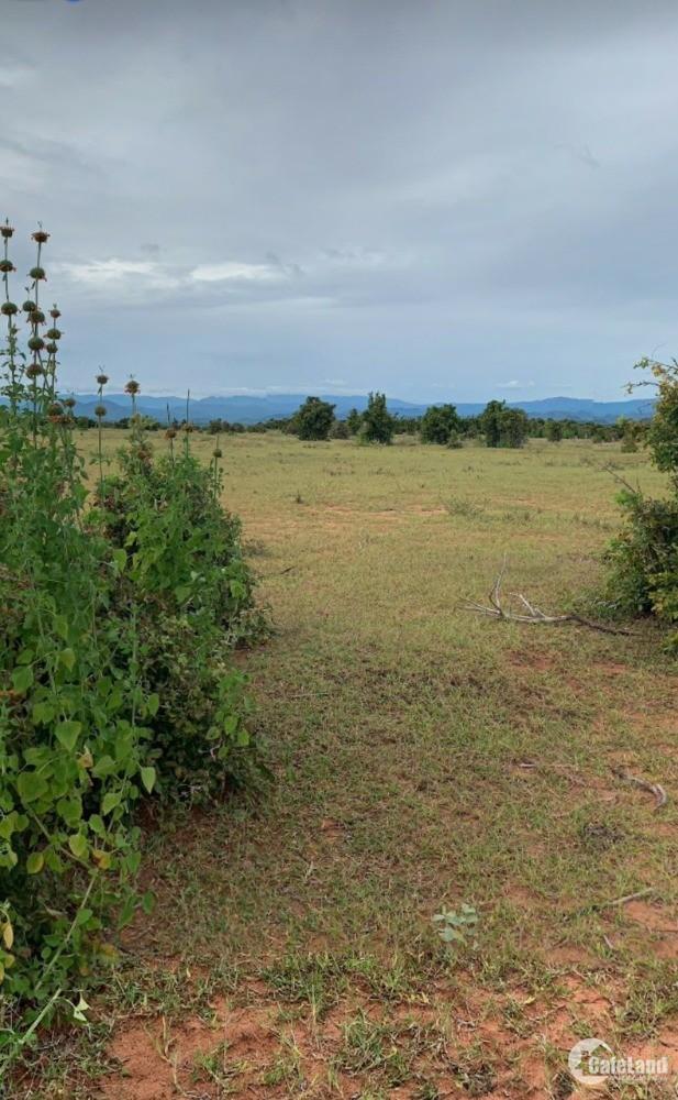 Bán 5871m2 đất nông nghiệp bình tân gần cv safari 3300ha chỉ 645tr Lh 0385230667
