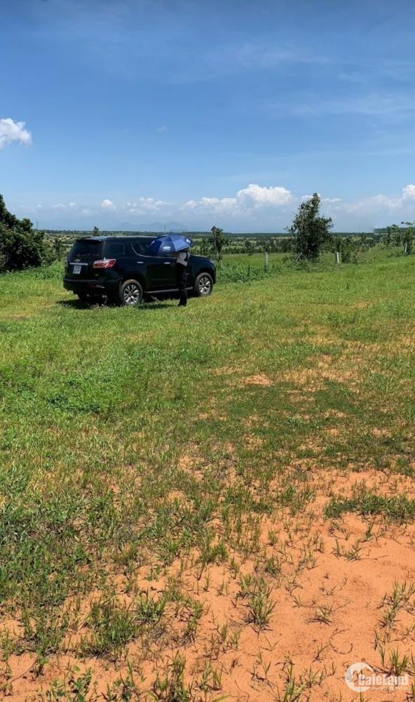 2 lô đất nông nghiệp hồng thài gần đường liên huyện từ 90k/m2 Lh 0938677909