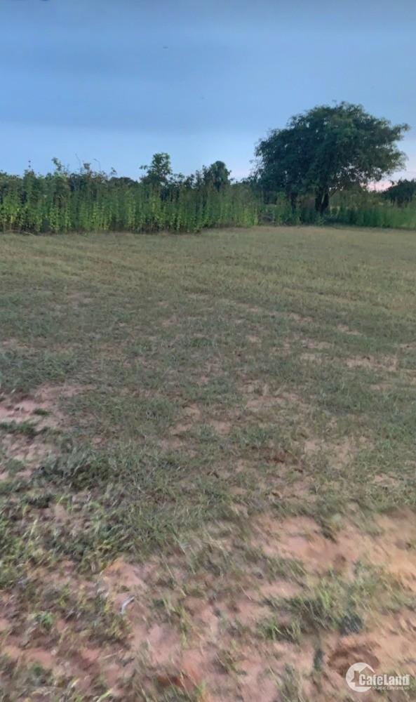 Cần bán đất bình tân 538tr gần kdl sinh thái safari 3300ha ck 5 chỉ L 0938677909