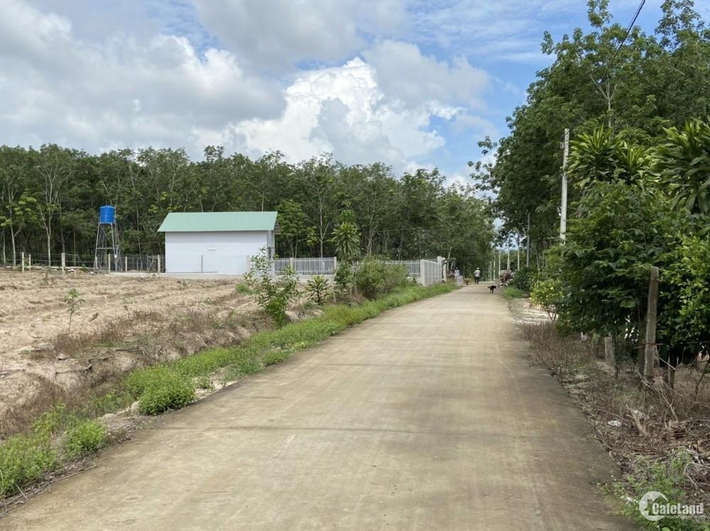 Bán 1000m2 đất Phước Bình- Long Thành, giá 2tr1/m2, đất ONT.