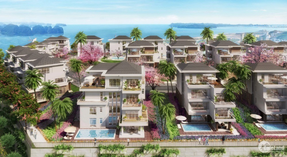 Dự án : Phoenix legend Ha Long Bay