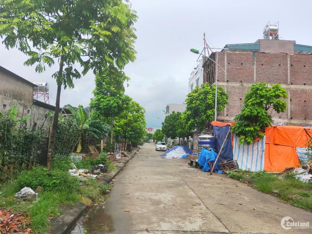 Bán ô đất dự án 65m2 hướng Nam - khu chợ tạm Cẩm Đông - Cẩm Phả