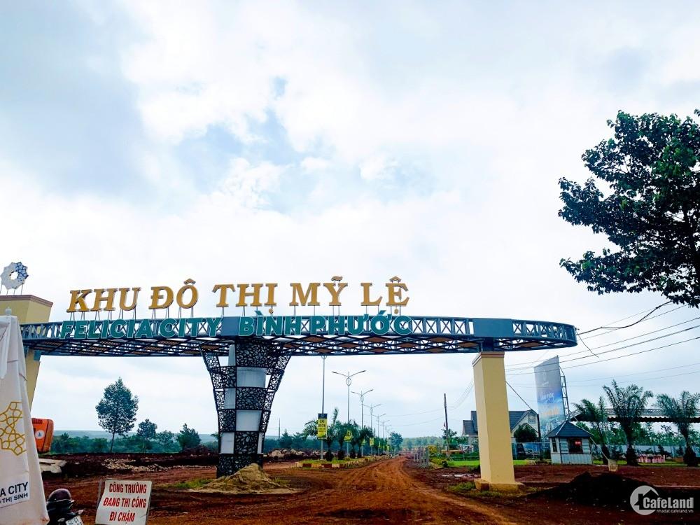 Đất nền ngay MT DT741 đầu tư chỉ với 460tr, thổ cư 100%, SHR