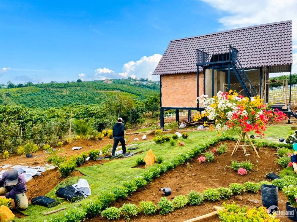Gia đình kẹt tiền bán gấp nền biệt thự view đồi tuyệt đẹp ngay trung tâm, giá F0
