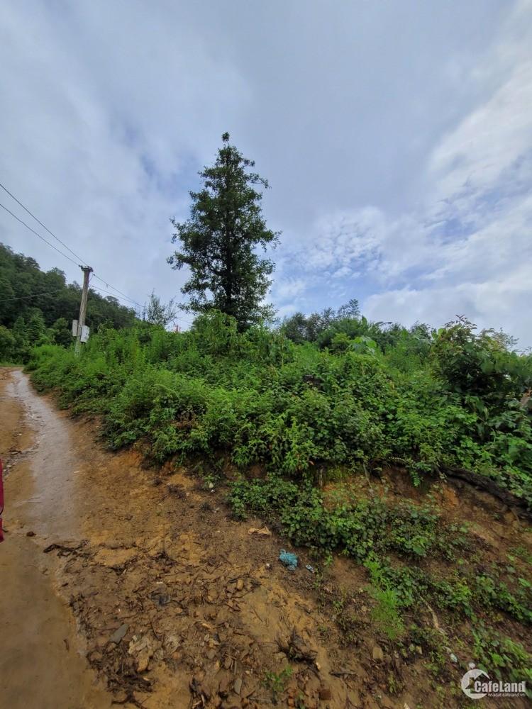 Bán đất Phìn Hồ, phát triển đô thị nghỉ dưỡng khu Y Tý-Sapa 2