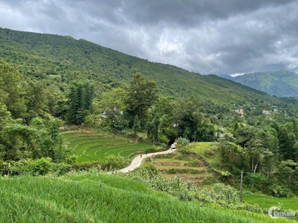 Bán đất thôn Lao Chải 1500m2 view Trung Quốc - Y Tý - Sapa 2