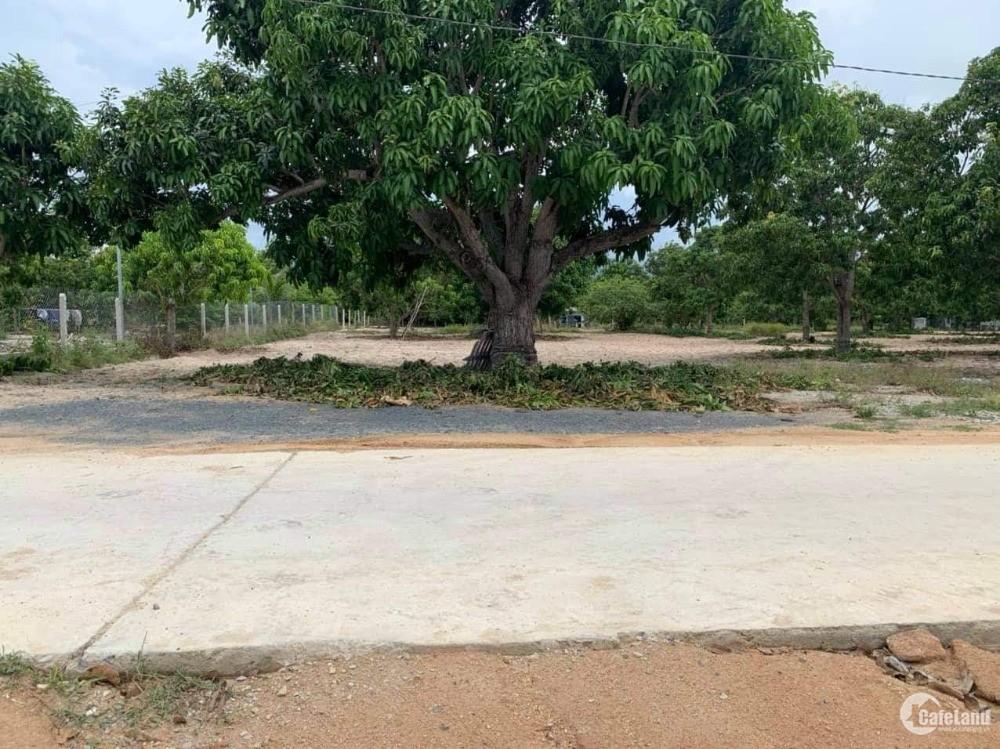 Bán đất 7400m2 tại Cam Hải Tây, vị trí ba mặt tiền đường giá chỉ 3,1tr0962670950