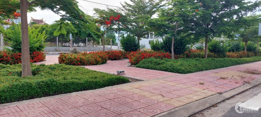Bán đất thổ cư tái định cư K8 Cam Hải Đông gần Đầm Thủy Triều.