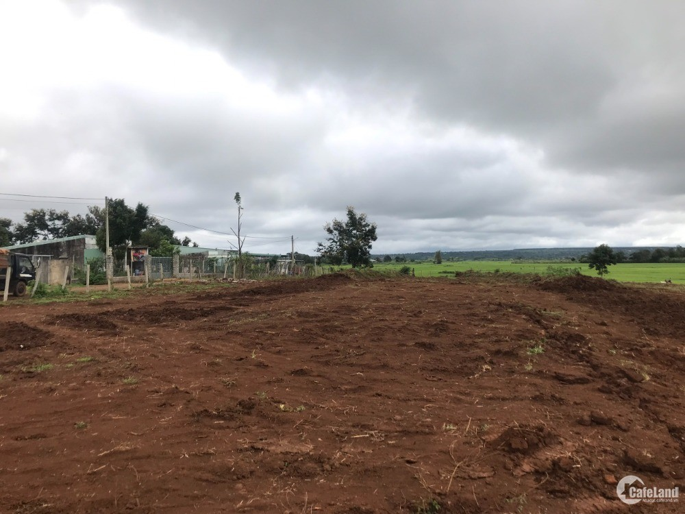 Đất hẻm Lý Thường Kiệt Xã Trà Đa GẦN BV NHI