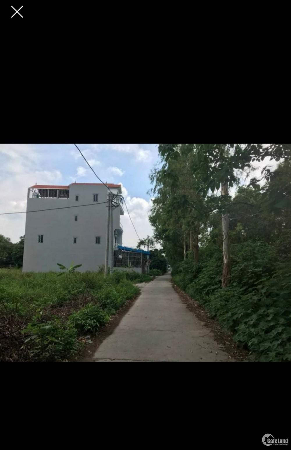Bán đất Ngọc Lịch - Trưng Trắc - Văn Lâm - HY sát Vinhomes dreamcity Lh